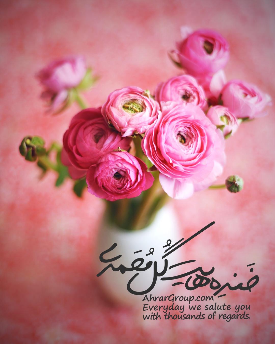 خندههایت گل محمدی